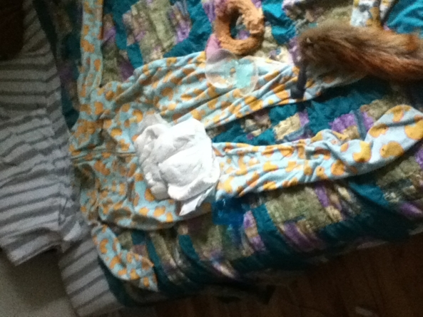 All the stuff I have for my sissies!, Pjs,diaper,fox,furry,butt plug