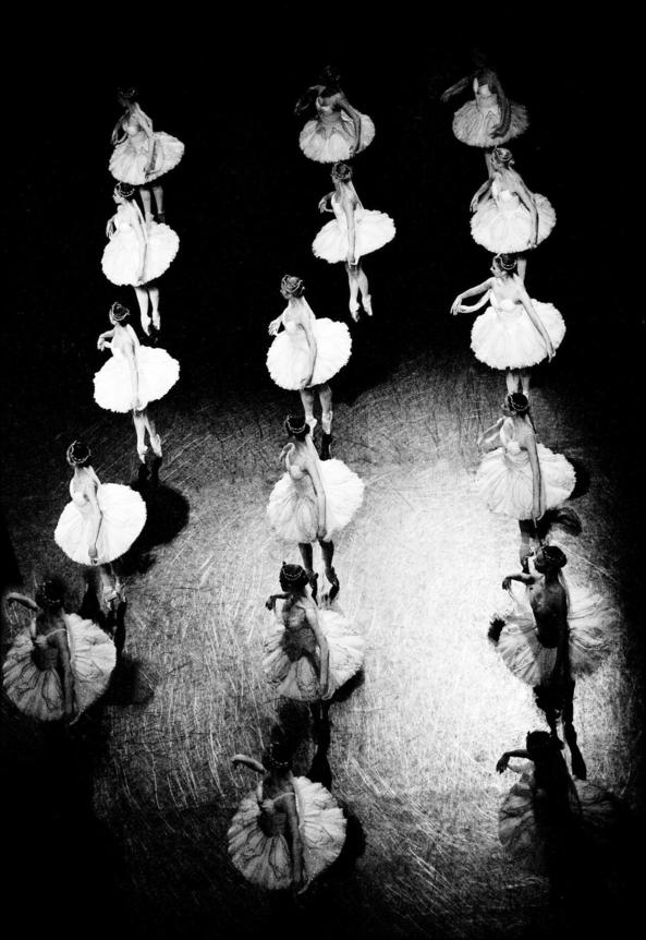 Ballet groups, ballet,ballerina,tutu, Body Suits,Fairytale